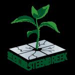 Logo_Stichting Steenbreek